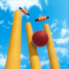 Activities of Cricket World Cup Mayhem 2019