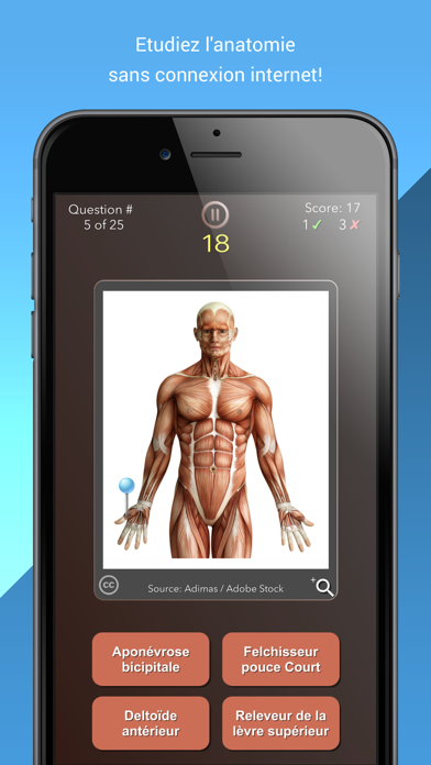 Screenshot #3 pour Anatomist – Anatomie Quiz Jeu