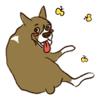 Vu Quoc Hung - Manly Boy A Boxer Dog Sticker  artwork