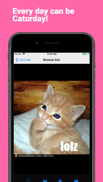 LOLCats Premium screenshot two