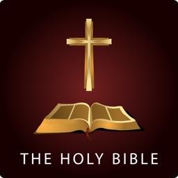 圣经英文朗读高清有声全集The Holy Bible Pro
