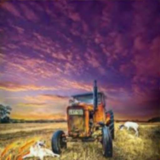 المزارع السعيد