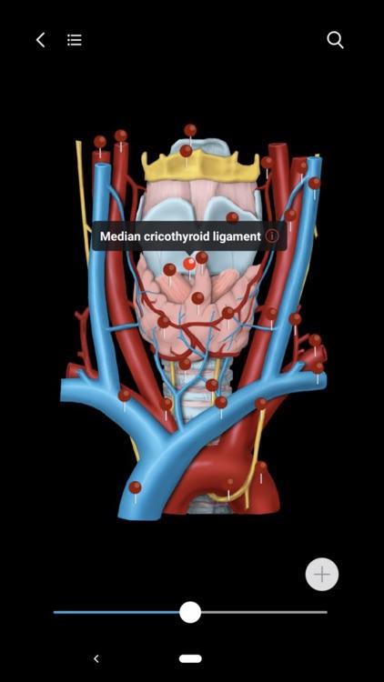 MedImaging-Radiology Made Easy screenshot-0