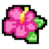 Codes for Pixel Pics! Hack