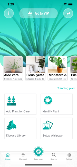 ‎PlantFinder - Quick identifier Screenshot