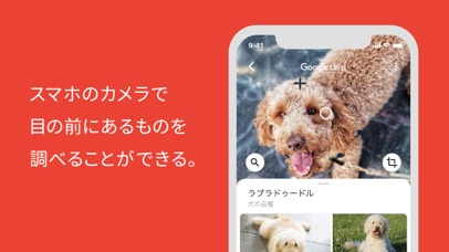 Google アプリ ScreenShot2