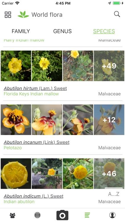 PlantNet screenshot-3