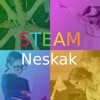 STEAM Neskak