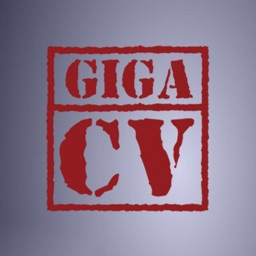 giga-cv Your resume