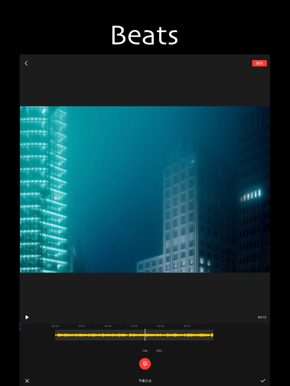 iPad Image of Tempo - Music Video Maker
