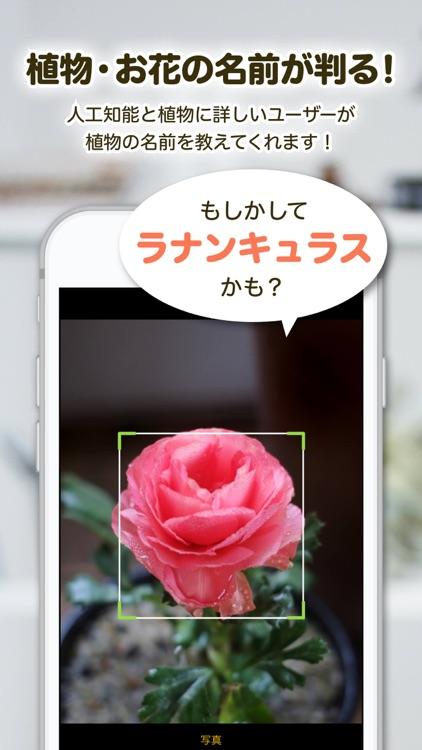 GreenSnap - 植物・花の名前が判る写真共有アプリ screenshot-0
