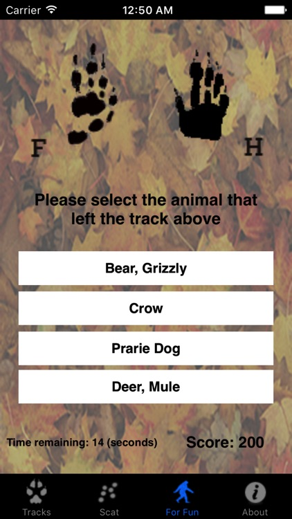 Critter Trax - Animal Tracks