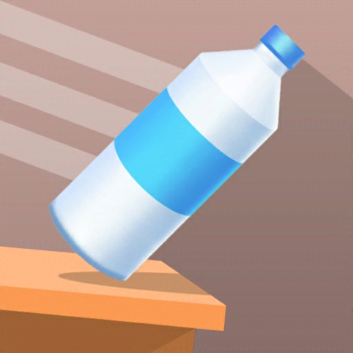 Bottle Flip 3D*.