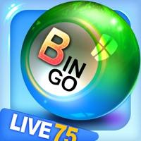 Bingo City 75: Bingo & Slots Hack Online Generator  img