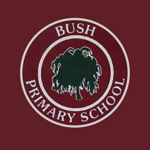 Bush PS