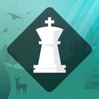 Magnus Trainer - Train Chess Hack Online Generator  img