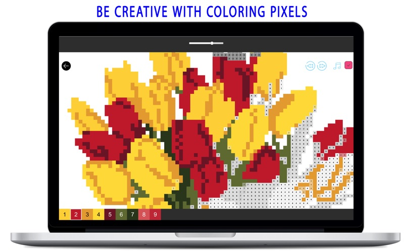 Coloring by Pixel Number for Mac