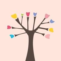 画画树·设计板-专业图片编辑&修图画图软件