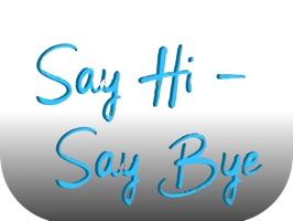 Say Hi, Say Bye