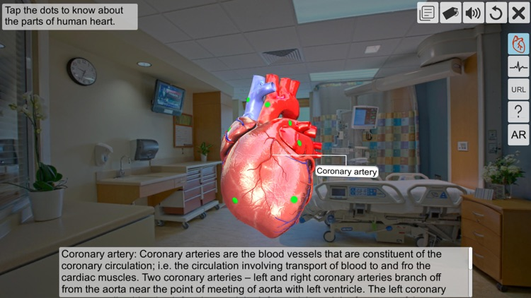 AR Human heart – A glimpse screenshot-3