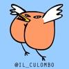 il Culombo