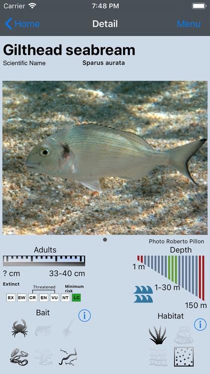 Fish Bait Lure Lite Quiz 2020 screenshot-5