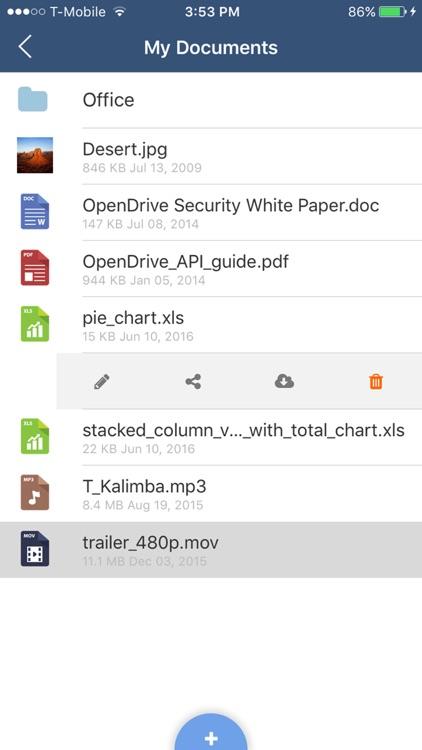 OpenDrive