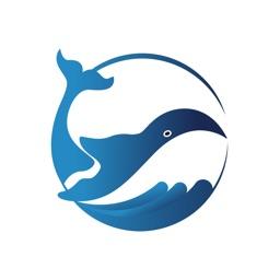 鲸才招聘-全职兼职找工作平台