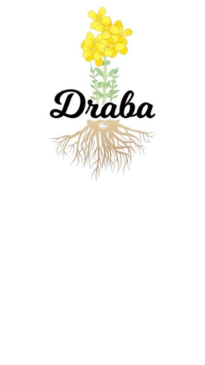 Draba