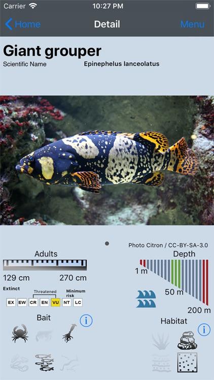 Fish Bait Lure Lite Quiz 2020 screenshot-0
