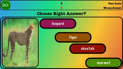 Animals Game!! screenshot #2