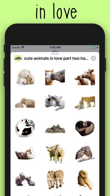 cute animals in love part 2