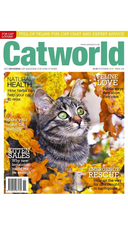 Catworld Magazine screenshot-7