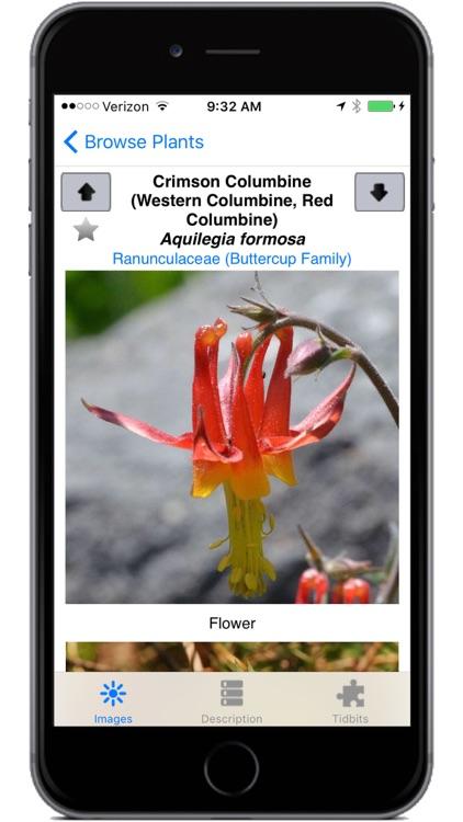 Yosemite Wildflowers screenshot-3