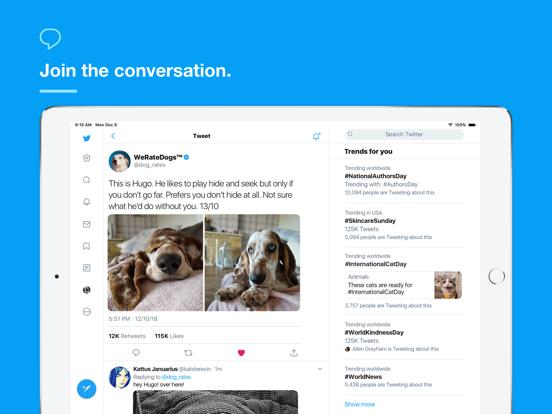 iPad Image of Twitter
