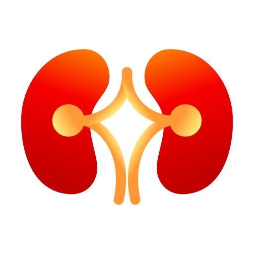 Stone MD: Kidney stones