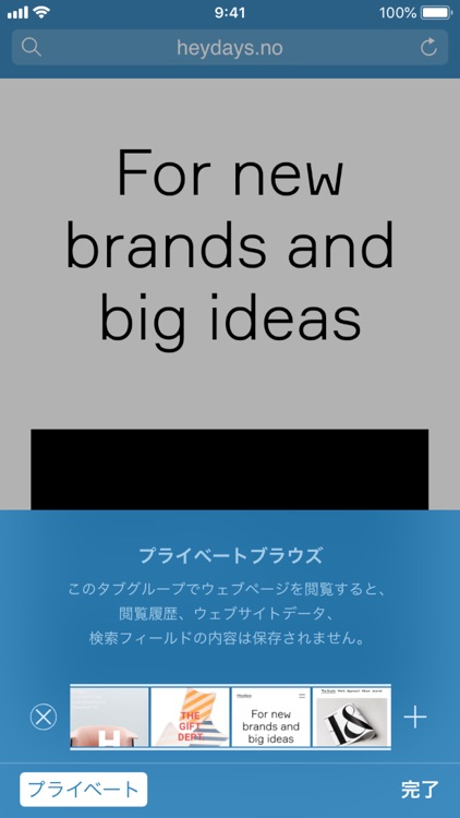 Sleipnir Mobile Black Edition screenshot-5