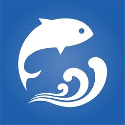 逐鱼-专业的企业资源服务平台