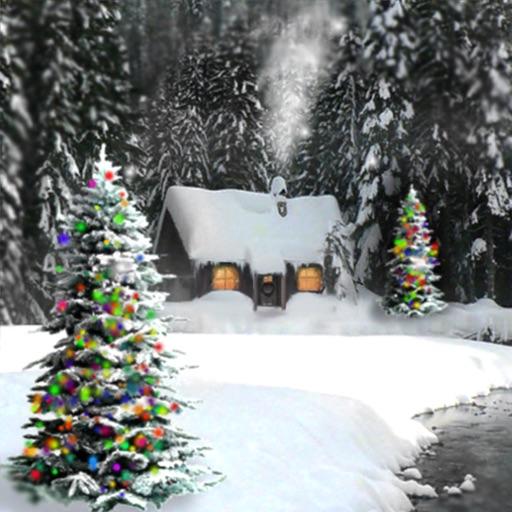 Zen of Snow