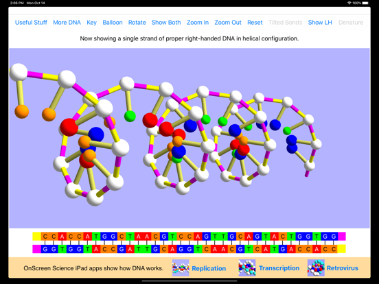 OnScreen DNA Modelのおすすめ画像5