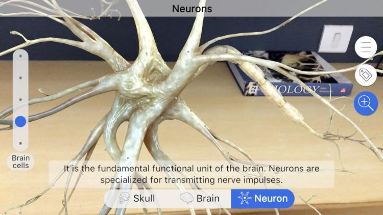 Brainapse screenshot-3