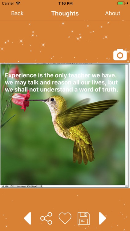 Swami Vivekananda Quotes App screenshot-4