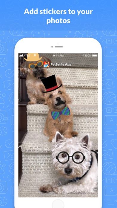 PetSelfie- Dog and Cat Camera Screenshots