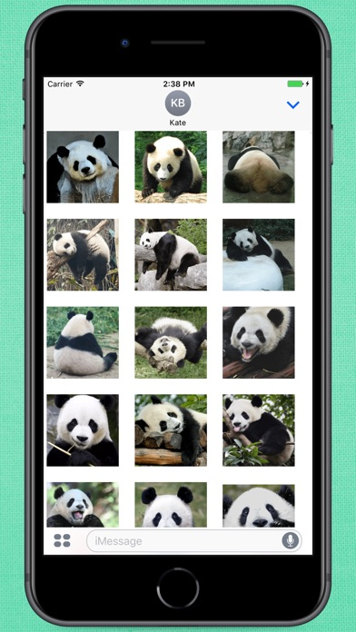 Screenshot for Funny Lazy Panda Stickers in Colombia App Store