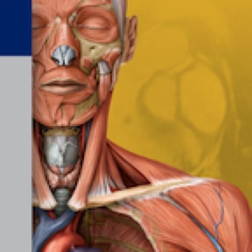 Thieme Anatomy on the Go 2.0 - English