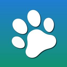 Animal Recognition AR