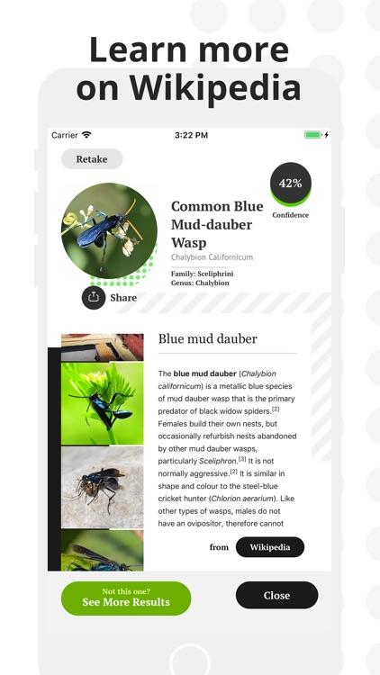 Insect Identification screenshot-4