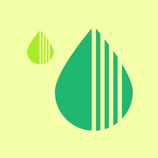 Happy Plant - No Water Thirst