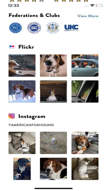 Dogs Pedia: Breed identifier screenshot-5