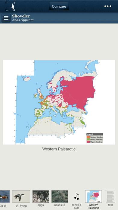 Birds of Northern Europeのおすすめ画像3